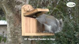 squirrel feeder pattern