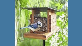 wooden bird feeder plans pdf