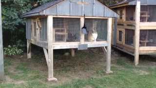 how to build a large outdoor rabbit hutch